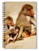 Baboon Family In The Desert Spiral Notebook