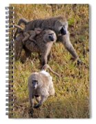 Baboon Family Spiral Notebook