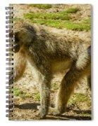 Baboon Spiral Notebook