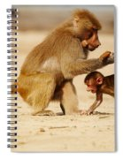 Baboon With Baby Spiral Notebook