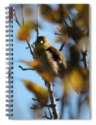 Baby American Goldfinch Learning To Fly Spiral Notebook