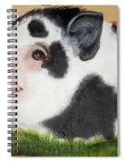 Baby Bacon Spiral Notebook