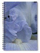 Baby Blue Spiral Notebook