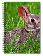 Baby Bunny Spiral Notebook