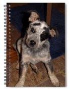 Baby Darla Spiral Notebook