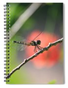 Baby Dragonfly Spiral Notebook