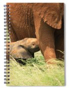 Baby Elephant Feeding Spiral Notebook