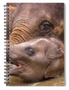 Baby Elephant Spiral Notebook