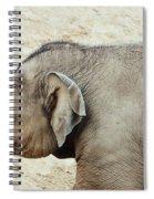 Baby Elephant Spiral Notebook