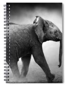 Baby Elephant Running Spiral Notebook