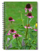 Baby Finch Spiral Notebook