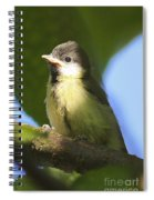 Baby Coal Tit Spiral Notebook