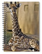 Baby Kiko Spiral Notebook