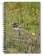 Baby Killdeer Spiral Notebook