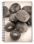 Baby Kiwi Distressed Sepia Spiral Notebook