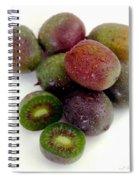 Baby Kiwi Spiral Notebook