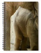Baby Lily Elephant Spiral Notebook