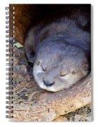 Baby Otter Spiral Notebook