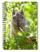 Baby Rock Squirrel  Spiral Notebook