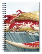 Baby Scarlet Spotted Dragon Spiral Notebook