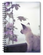 Baby Siamese Kitten Spiral Notebook