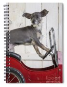 Baby You Can Drive My Car Spiral Notebook