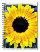 Back Forty Sunflower Spiral Notebook