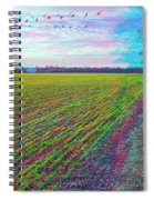 Back Forty - Use Red/cyan Filtered 3d Glasses Spiral Notebook