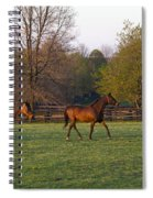 Back To The Barn Spiral Notebook