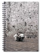 Backgammon At The Ancient Wall Spiral Notebook