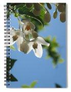 Backlit Blossom Spiral Notebook