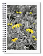Backwoods Escape Triptych Spiral Notebook