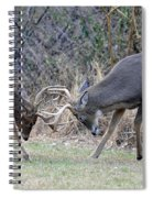 Backyard Brawl Spiral Notebook