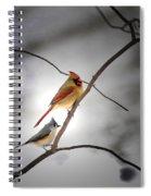 Backyard Buddies Spiral Notebook