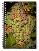 Backyard Garden Series -hidden Grape Cluster Spiral Notebook