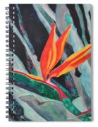 Backyard Paradise Spiral Notebook