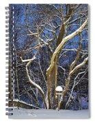 Backyard Trees Spiral Notebook