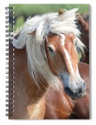 Bad Hair Day 8024 Spiral Notebook