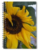 Bad Petal Day  Spiral Notebook