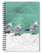 Bahama Birds Spiral Notebook