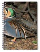 Baikal Teal Spiral Notebook