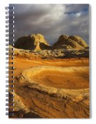 Baked Earth Spiral Notebook