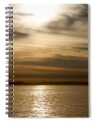 Balboa Gold Tones Spiral Notebook