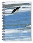 Bald Eagle 2832 Spiral Notebook