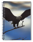 Bald Eagle And Clouds Spiral Notebook
