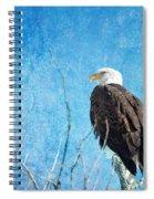Bald Eagle Blues Spiral Notebook