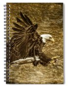 Bald Eagle Capture Spiral Notebook