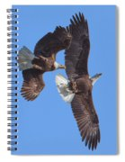 Bald Eagle Chase Over Pohick Bay Drb148 Spiral Notebook