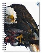 Bald Eagle Eating It's Prey Spiral Notebook