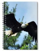 Bald Eagle Feeding 2 Spiral Notebook